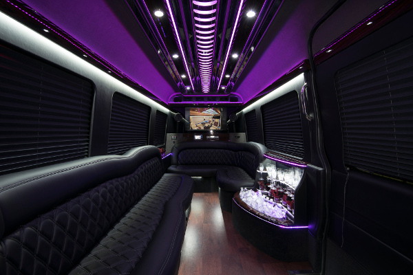 12 passenger sprinter in Dallas Interior