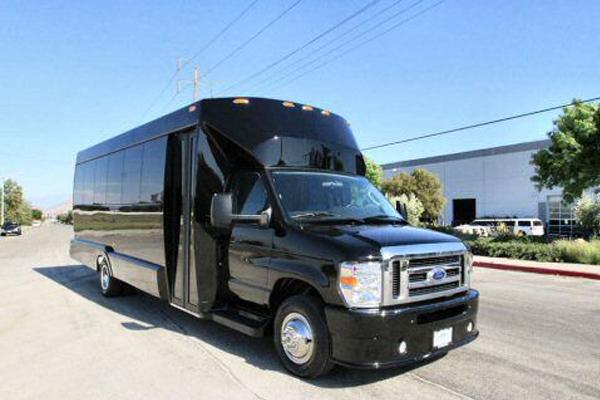 20 passenger party bus Dallas